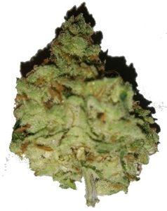11 238x300 - DUUUU konsumierst Cannabis?????  ECHT? ;)