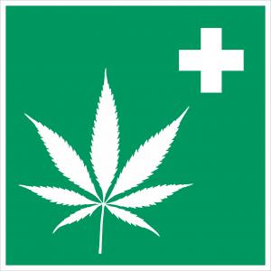 cannabis 2273795 1280 300x300 - Neuer Erfahrungsbericht mit dem 24%igen CBD-Öl von Enecta