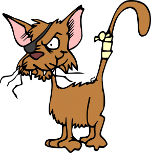 cat 47896 1280 295x300 - *Tierarzt, MS und Fatigue