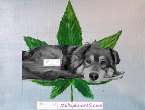 smiley hanf 300x228 - CBD für Tiere: tolle Webseiten zum Schmökern und Informieren! 😊