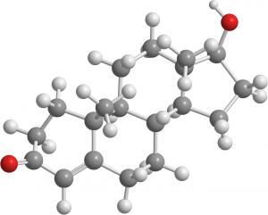 testosterone 2901425 1280 300x241 - Periode, PMS und Multiple Sklerose - Das prämenstruelle Syndrom und Multiple Sklerose