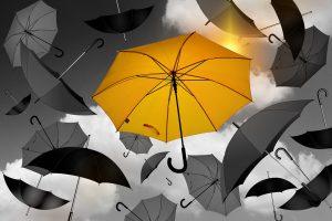 umbrella 1588167 1280 300x200 - *Geburtstag, MS und der Sinn des Lebens