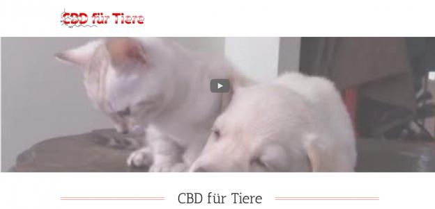 Screenshot 2018 06 05 11.55.24 624x301 - CBD für Tiere: tolle Webseiten zum Schmökern und Informieren! 😊