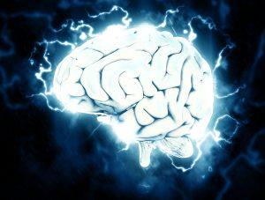 brain 1845962 1280 300x227 - Hilft CBD bei Migräne?