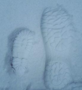 51193520 1221756327975487 2567293976512036864 n 275x300 - Schnee und MS – keine reine Freude!