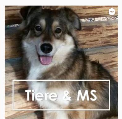 sm 1 - Helfen (Haus)-Tiere bei MS? ms-begleiter